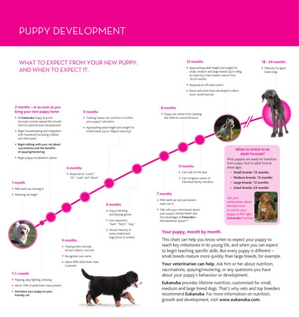 Puppy Development Chart Eukanuba Download Printable Pdf