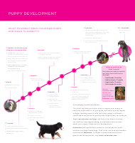 """Puppy Development Chart - Eukanuba"""