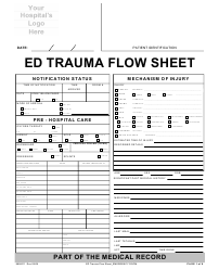 Ed Trauma Flow Sheet Template