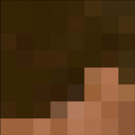 """Minecraft Steve Costume Template (Side)"""