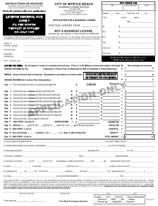 Application for a Business License - City of Myrtle Beach, South Carolina Download Pdf