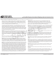 PS Form 2976-B Priority Mail Express International Shipping Label and Customs Form - Sample