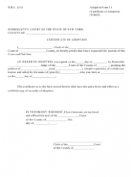 Form 14 Certificate of Adoption - New York