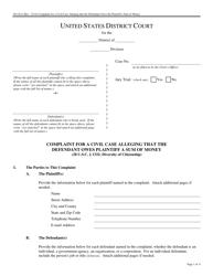 Form Pro Se 6 Complaint for a Civil Case Alleging That the Defendant Owes Plaintiff a Sum of Money