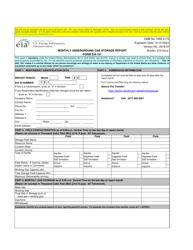 Form EIA-191 Monthly Underground Gas Storage Report