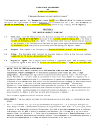 """LLC Operating Agreement Template"""