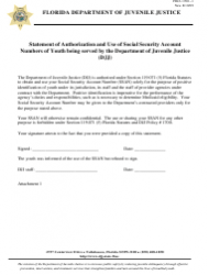 Statement Of Authorization And Use Of Social Security Account Numbers Of Youth Being Served By The Department Of Juvenile Justice (djj) - Florida