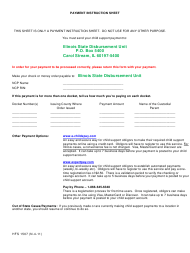 "Form HFS1507 ""Payment Instruction Sheet"" - Illinois"