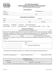 DNR Form 542-0723 Tier 2 Site Cleanup Report Leaking Underground Storage Tank Site Assessment - Iowa