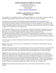 """Criminal Docketing Statement Form"" - Massachusetts"