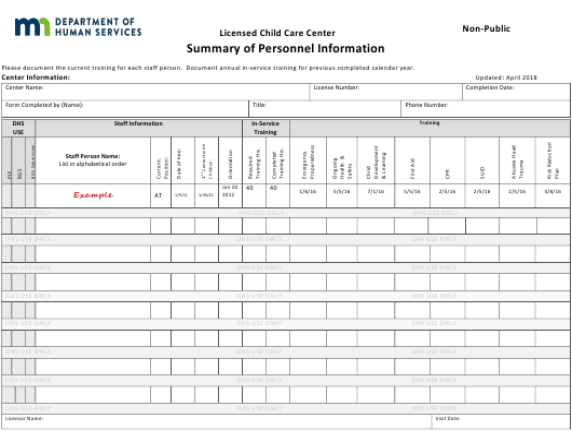 """Summary of Personnel Information - Non-public - Licensed Child Care Center"" - Minnesota Download Pdf"