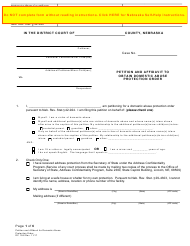 """Form DC19:8 """"Petition and Affidavit to Obtain Domestic Abuse Protection Order"""" - Nebraska"""
