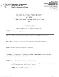 "Form DOS-2119-F ""Certificate of Amendment of the Certificate of Incorporation"" - New York"