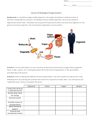 """Levels of Biological Organization Worksheet - Biology 231 Anatomy and Physiology, Portland Community College"""