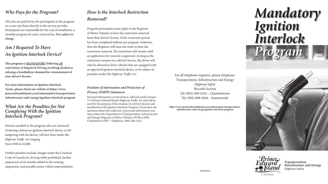 Form 19TR06-50973 Printable Pdf