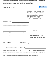 """""""Order to Show Cause With T.r.o. on Civil Action"""" - Queens County, New York"""