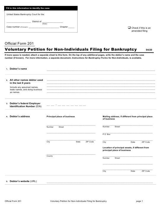 Official Form 201 Printable Pdf