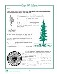 """Alaska Wildlife Curriculum - Trees Worksheet"" - Alaska"