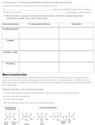 Carbon Compounds Worksheet   Chapter 2.3,the Chemistry of ...