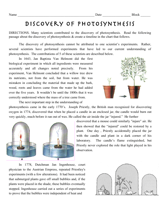 """""""Discovery of Photosynthesis Worksheet - Polytech High School"""" Download Pdf"""