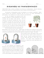 Discovery Of Photosynthesis Worksheet - Polytech High School