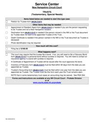 "Form 024 ""Testamentary Trust Checklist"" - New Hampshire"