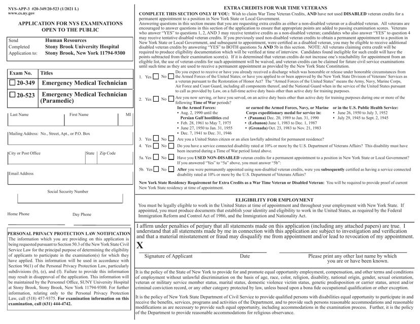 Form NYS-APP-3 #20-349 (NYS-APP-3 #20-523)  Printable Pdf