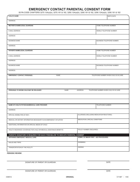 Form CY867  Printable Pdf