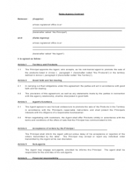 Sales Agency Contract Template