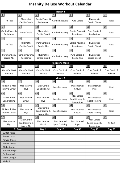 Insanity Workout Schedule Download Printable Pdf Templateroller