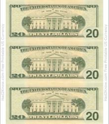 """Twenty Dollar Bill Template - Back"""