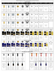 """""""Insignia of the Us Armed Forces Rank Chart"""""""