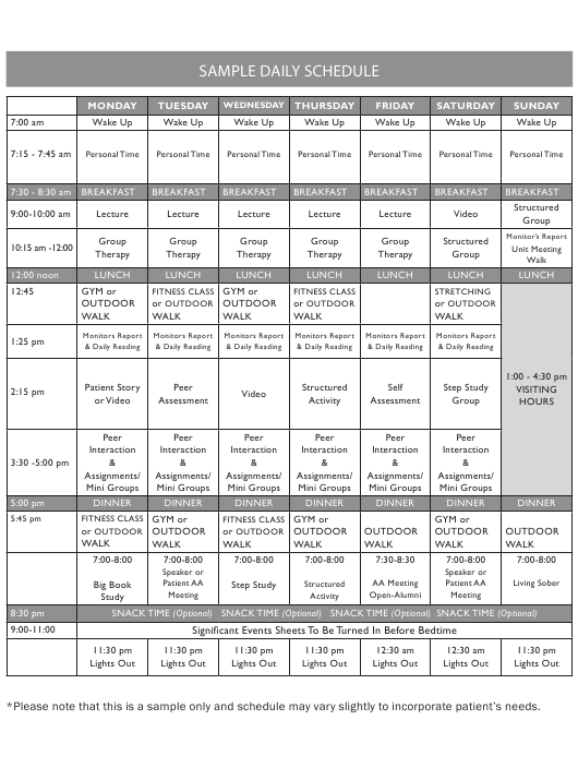 """Sample """"Daily Schedule for Aa Members"""" Download Pdf"""