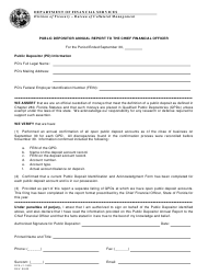 Form DFS-J1-1009 Public Depositor Annual Report to the Chief Financial Officer - Florida