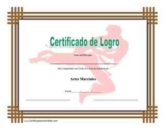 Certificado Do Logro En Artes Marciales