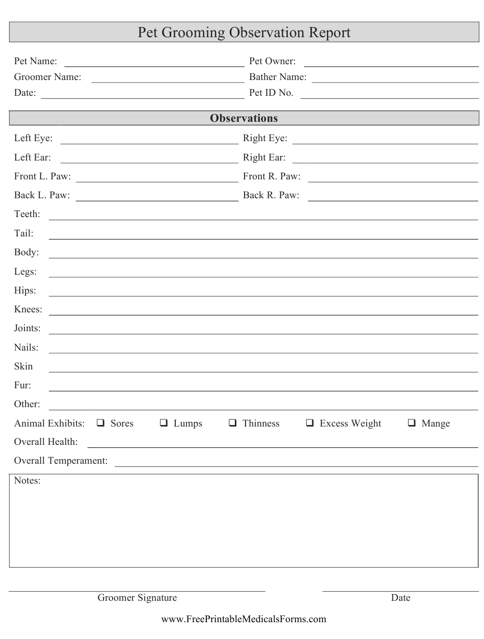 Pet Grooming Observation Report Form Download Printable PDF In Dog Grooming Record Card Template