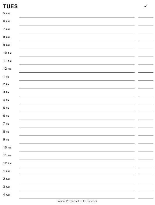 picture regarding Printable Hourly Planner known as Tuesday Hourly Planner Template Obtain Printable PDF