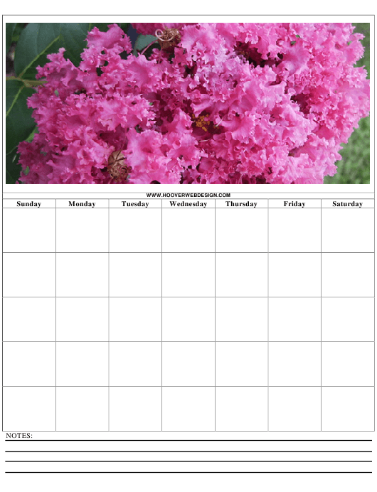"""""""Weekly Schedule Template"""" Download Pdf"""