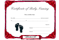 """Baby Naming Certificate of Birth Template"""