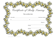 """Certificate of Baby Naming Template"""
