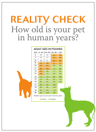 """""""Pet Age Chart Template"""""""