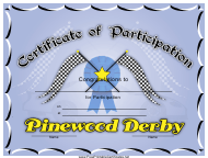"""Pinewood Derby Participation Certificate Template"""