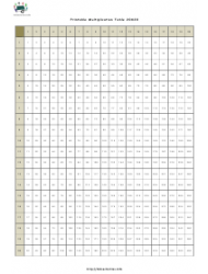 20 X 20 Times Table Chart
