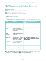 Ribosomes and Protein Synthesis Worksheet - 12-th Grade, Toms River High East School